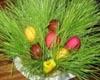 Как празднуется пасха в Армении?