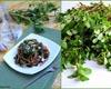 Пряные листовые овощи в Армянской кухне
